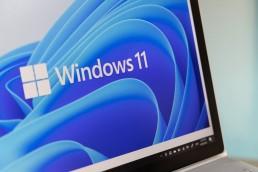 Windows 11 im Browser testen